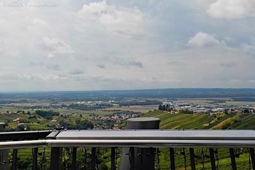 Kilátás a Vinarium-toronyból