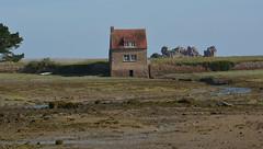 Moulin à marée (Bernard P.) Tags: bretagne france maison mer rocher plage ciel bleu nikon
