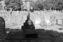 _IAW9649 (IanAWood) Tags: cemeteryclub cemeteryparks citiesofthedead graveyards headstonehunting isleworth isleworthburialboard isleworthcemetery lbofhounslow london londonnecropolis londonsdead nikkorafs58mmf14g nikondf victoriancemeteries walkingamongstthedead walkingwithmynikon