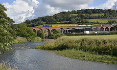 1Q83 (elr37418) Tags: whalley viaduct bridge red brick clitheroe lancashire england uk river test train water nikon d7100 blackpool crewe 37612 37421 colas railfreight network rail yellow blue drs flickr calder gothic bolton blackburn abbey landscape seven million
