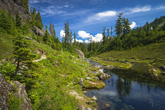 Bagley Creek Blue and Green (RobertCross1 (off and on)) Tags: a7rii alpha bagleycreek deming emount heathermeadows ilce7rm2 mountbaker mountshuksan mtbakersnoqualmienationalforest nationalforest northcascades pacificnorthwest sony wa washington whatcom bluesky clouds creek forest fullframe hiking landscape mirrorless nature reflection stream trail trees water fe1635mmf4zaoss flowers wildflowers grass