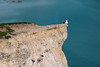 A Cliftop Seagull Beachy Head (Meon Valley Photos.) Tags: a cliftop seagull beachy head ngc chalk