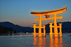 Miyajima, Japan (Rafael Fink) Tags: miyajima japan torii water orange