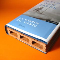 #booksday #diadellibro #ladrillo (vlekuona) Tags:
