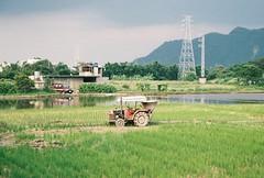 (YL.H) Tags: canon 500n agfa film analog taiwan 底片 大溪 farmland