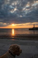 Margate Steps (@bill_11) Tags: england isleofthanet kent margate places sunset unitedkingdom weatherandseasons gb