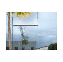 The bush.  ( Pamplona ) (José Luis Cosme Giral) Tags: thebush minimalism sky glass reflection urbanscape urbannature suburbanplace olympus pamplona navarra