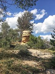 Hoodoo (wyojones) Tags: wyoming alkaliroad bighornmountains bighorncounty pennsylvaniantensleepsandstone hoodoo outcrop sandstone crossbedded pillar erosionalremnant quakingaspen pinyonpine trees geology geomorphology wyojones