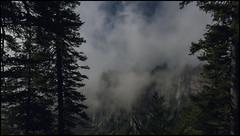 _SG_2018_07_9008_IMG_8911 (_SG_) Tags: schweiz suisse switzerland daytrip tour creux du van natural rocky cirque val de travers canton neuchatel nature mountain hiking glacier summit ferme soliat noiraigue sentier des 14 contours