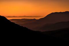Sunrise on the road to Hurricane Ridge, Olympic National Park, Washington State (diana_robinson) Tags: sunrise hurricaneridge silhouette olympicnationalpark washingtonstate layered orange mountains mountainrange misty