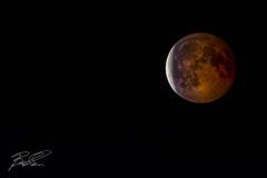 Fine eclissi (boscoloaaron1) Tags: luna moon panorama landscape fotografia photography luce light cielo sky favoloso fabulous romantic romantico italy italia emiliaromagna romagna sigma150600 sigma nikon nikond5300 d5300 eclissi eclipse