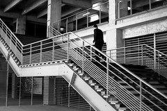 In the metallic staircases (pascalcolin1) Tags: paris13 homme man escalier staircase lumière light ombres shadows métallique métallic photoderue streetview urbanarte noiretblanc blackandwhite photopascalcolin 50mm canon50mm canon