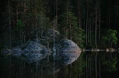 20180522-115P (m-klueber.de) Tags: 20180522115f 20180522 2018 mkbildkatalog nordeuropa skandinavien scandinavia schweden sweden sverige västergötland närke tiveden tivedennationalpark nationalpark see stora trehörningen kiefer kiefern ufer spiegelung 20180522115p portfolio bildauswahl