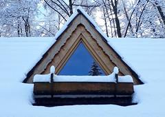 Zakopane-November'17 (95) (Silvia Inacio) Tags: zakopane poland polska polonia snow neve winter inverno tree árvore house casa window janela