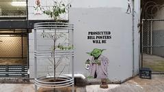 Celout... (colourourcity) Tags: melbourne burncity colourourcity awesome nofilters original streetart streetartaustralia streetartnow graffiti celout yoda starwars krylon pasteup jedi