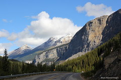 Mountains along the Icefields Parkway, Alberta, Canada (Black Diamond Images) Tags: icefieldsparkway scenictours scenic 2012 alberta canada banfftojasper banffnationalpark nationalpark mountains mountain unidentifiedmountain canadianmountains albertamountains forest sky water tree landscape
