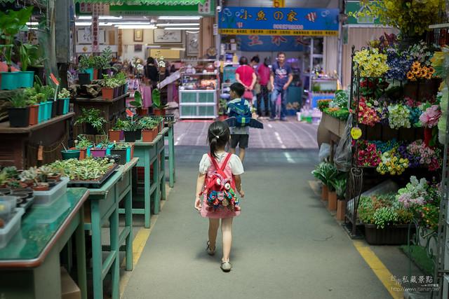 南門假日花市 多肉、空鳳、蘭花、園藝用品 (7)