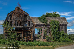 dilapidated barn (Al Fontaine) Tags: dilapidated barn decay barns buildings oldbuildings vegetation vines overgrown green clouds bluesky blue nature landscape d7000 nikon