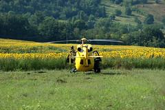 Yellow! (bejolino) Tags: sunflower helicopter girasoli elicottero