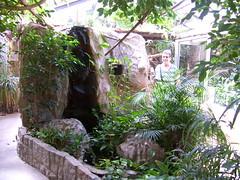 Tierpark - Falkenstein / Vogtland (Seesturm) Tags: 2018 seesturm germany deutschland saxony sachsen vogtland falkenstein tierpark präriehunde nandus kamele ziegen schweine waschbären schnecken esel tropenhaus