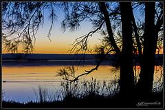 Winter Sunset 2018 1 (itsallgoodamanda) Tags: amandarainphotography australia australianlandscape australiassouthcoast silhouettetrees sunset sunsetphotography photography prettybeach photoborder peaceful prettysunset digitaloilpaint winter2018 wintersunset ocean shoalhaven seascape sea seaside southcoast stgeorgesbasin seascapephotography sanctuarypoint coastallandscape coastal coastline colourfullandscape calmocean landscape landscapephotography landscapecoast jervisbayphotography jervisbay australianphotography oceansunset