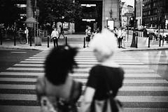 Among Friends 229.365 (ewitsoe) Tags: canoneos6dii ewitsoe street warszawa erikwitsoe poland summer urban warsaw monochroem bnw blackandwhite crosswalk city peopel two ladies people canon 50mm evening warm summery tourist travel