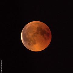 Moon 2018 27 july (Giancarlo - Foto 4U) Tags: c2018 100 180727 200500mm d850 giancarlofoto nikon de lune moon moonlight rouge sang