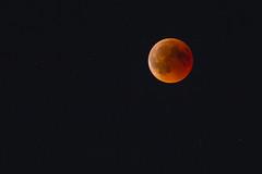 blood moon (tinfrey) Tags: canonef2xiii canonef70200mmf4lisusm canoneos6d bloodmoon moon switzerland