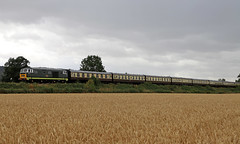 D7017 visits the Gloucestershire and Warwickshire railway (Andrew Edkins) Tags: gloucestershireandwarwickshirerailway d7017 hymek hydraulic laverton preservedrailway canon geotagged light travel passenger trip diesel railwayphotography class35 wheat july 2018 summer gloucestershire