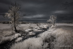 Contrasty Landscape (gporada) Tags: infrared contrasty leadingline d40 nikon altmühlsee germany bavaria mittelfranken landscape drama summer biking travelling lens1855mmf3556 720nm
