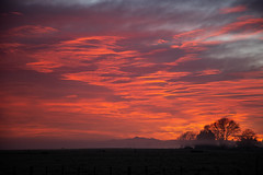 Fiery sky in the morning... (melmelhamm) Tags: fiery sky red orange landscape morning dawn new zealand puketaha silhouette tree te aroha mount mountain range