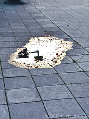Overcasted (josefinenylander) Tags: puddle water sombre reflection sweden ground sign dark mellow blue where wet leaves
