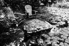 La place des connaisseurs... (woltarise) Tags: botanique jardin montréal étangs lotus soleil espace fauteuils sérénité plaisir moment iphone7
