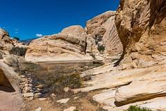 Calico Springs Trail (karlsjohnson) Tags: conservationarea desert hiking karl lasvegas national nevada nikon redrockcanyon travel unitedstates