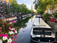 Morning Splendor in Amsterdam (Rob Shenk) Tags: europe europe2018 amsterdam noordholland netherlands nl dutch travel canals cityscapes water houseboat flowers prinsengracht westerkerk
