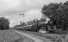 Sonderzüge (7) (Klaus Z.) Tags: eisenbahn kbs 395 leer eisinghausen br 01 519 sonderzug personenzug westfalendampf dampflok