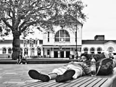 Backpacker (d_t_vos) Tags: man boy backpack backpacker traveller travelling sleep sleeping outside outdoor couch lyingdown shorts shoes railwaystation railways street streetphotography streetportrait candid portrait tree dof perspective monochrome zwartwit schwarzweiss blackandwhite bw noireetblanc contrast people leeuwarden lf2018 fiesland fryslân building stationsplein sophialaan culturalcapital 2018 culturalcapitalofeurope dickvos dtvos