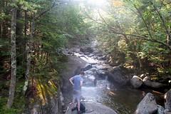 Phelps Brook 1808054104w (gparet) Tags: hike hiking trail trails woods forest nature outdoor outdoors scenic vista naturephotography adk adirondacks adirondacksstatepark brook creek stream water watercourse