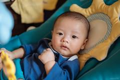 JYL00716 (kivx) Tags: planar t 2050 zm planart2050zm 50mm zeiss carl carlzeiss baby son