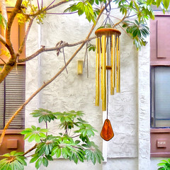 < Chimin' > (Wandering Dom) Tags: wind chimes waiting gentle breeze building architecture southerncalifornia geometry facade windows tree nature courtyard humans living habitat people existence being nothingness reality dream roam wandering