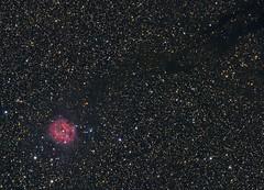 Cocoon Nebula (Roberto_Mosca) Tags: cocoon astronomy astronomia ic5146 flt132 william optics qhy 367c