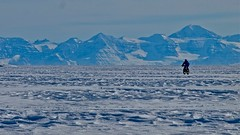Kate cycles down Hurry Fjord, Northeast Greenland, image by P Poole