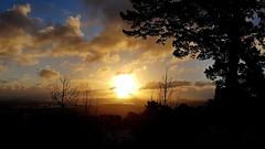 Sunset sur la ville d'Auckland depuis les hauteurs de East Tamaki (Christian Chene Tahiti) Tags: samsung s7e téléphone mobile easttamakiheights pointviewreserve dannemora ciel sky tree nuage cloud pelouse aucklandnznew zealandtravelvoyageflorecouleurcolournatureparkingbotanycentre commercialsunsetcoucher de soleil arbre bleu orange jaune nuit hiver winter froid crépuscule sun