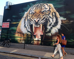 Shoreditch Street Art by Graffiti Life (scats21) Tags: