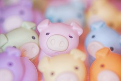211/365 : Crowded (♥GreenTea♥) Tags: pig eraser pigeraser pigs erasers pigerasers bluepig pinkpig purplepig greenpig orangepig yellowpig blue pink purple green orange yellow iwako iwakoeraser iwakoerasers イワコー t1i canon canont1i canont1irebel canonrebel eos canoneosrebelt1i ef100mmf28macrousm canonef100mmf28macro hdr googlenikcollection nikcollection colorefexpro viveza hdrefexpro 365 photoaday pictureaday project365 365toyproject oneobject oneobject365daysproject 365the2018edition 3652018 day211365 365day211 day211 project365211 30july18 project36507302018 07302018 odc ourdailychallenge crowd crowded crowdorcrowded odccrowdorcrowded ourdailychallengecrowdorcrowded