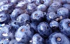 Blueberry Time (losy) Tags: summer blueberries food juicy lecker berries market losyphotography smoothy