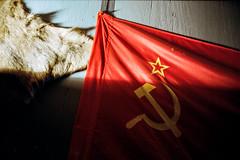 bears in heaven (Walther Le Kon) Tags: analog film russia russland russischeförderation udssr ussr flag russianflag wladimirwladimirowitschputin elpresidente lupenreinerdemokrat demokratischerautokrat staatsmann staatsmacht staatsmächtiger russianbear russischerbär bärenfell orden buttons