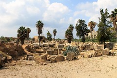 IMG_0464 (Nai.Sass) Tags: lebanon trave tyre sour anjar baalback ruins roman byzantine middle east temples summer vacation sea amateur