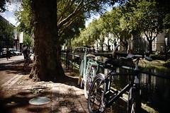 Bokeh@Kö, Düsseldorf 2018 Summer 5 (Amselchen) Tags: bokeh blur dof depthoffield bike bicycle city street sidewalk water germany sony a7rii sonyilce7rm2 sigma sigmamc11 30mmf14dchsm|art light shadow season summer