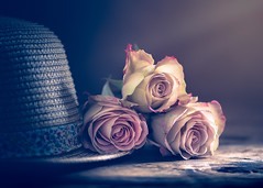 Roses and hat (Ro Cafe) Tags: roses stilllie flowers hat naturallight softlight setup romantic pastelcolours pink nikkormicro105f28 nikond600
